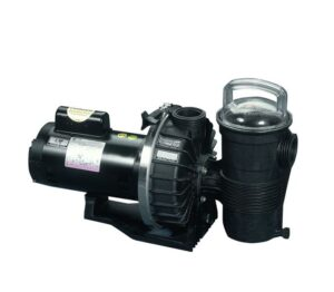 Pentair Challenger Pool Pumps