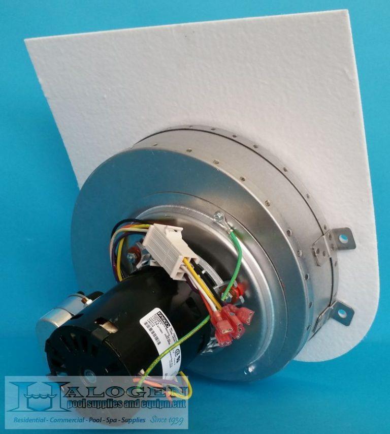 Minimax Nt 250 300 Blower Amp Gasket Halogen Supply