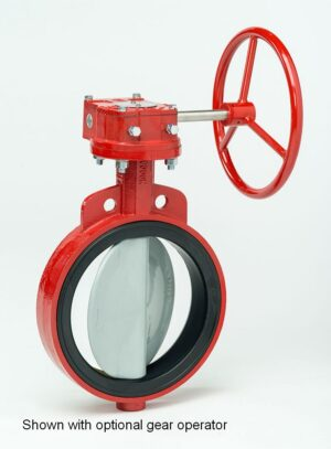 Bray Cast Iron Butterfly Commercial Pool Valves