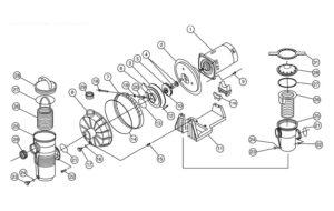 Pentair Challenger High Flow Inground Pool Pump Replacement Parts